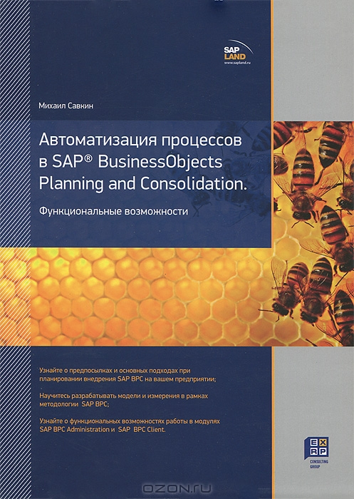 Автоматизация процессов в SAP BusinessObjects Planning and Consolidation.  Функциональные возможности