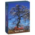 Дерево как образ человека (набор из 112 карточек)