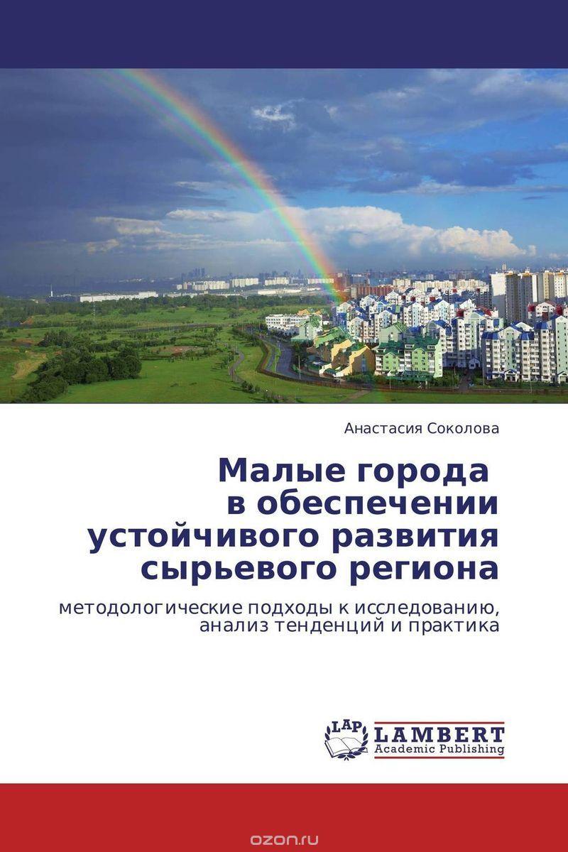 Малые города в обеспечении устойчивого развития сырьевого региона
