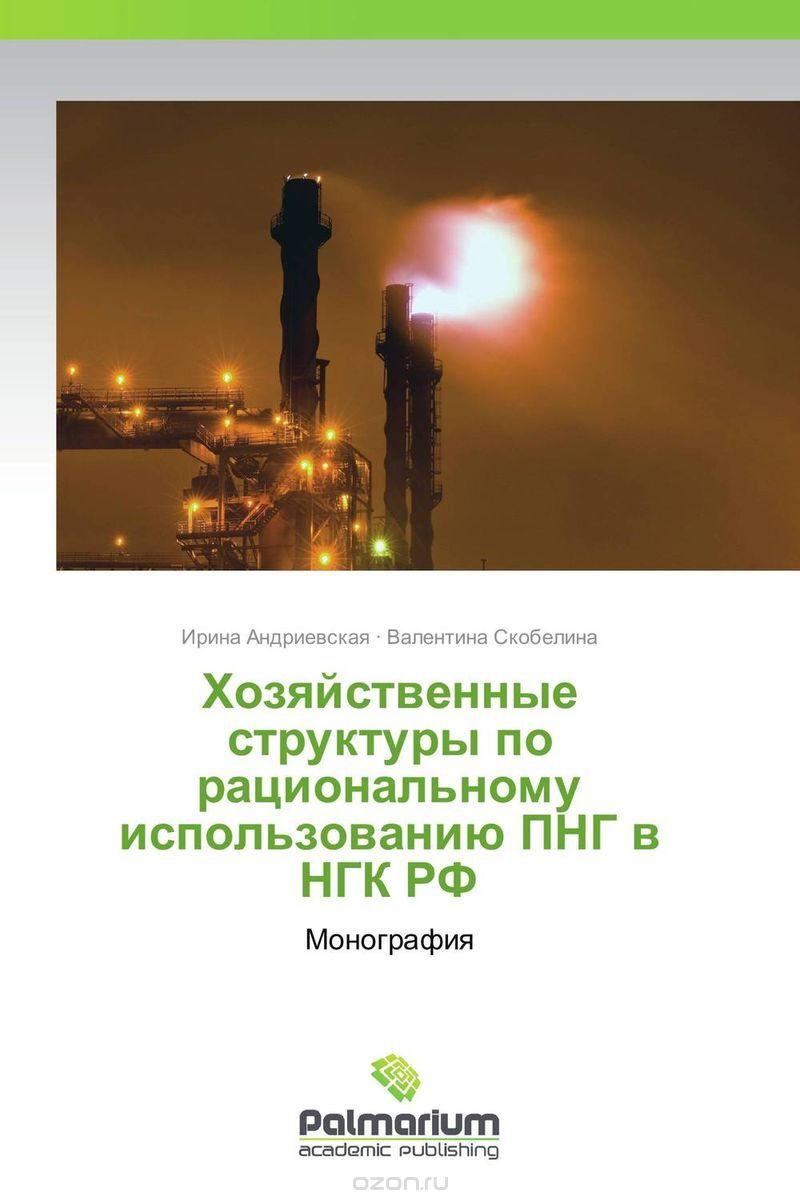 Хозяйственные структуры по рациональному использованию ПНГ в НГК РФ