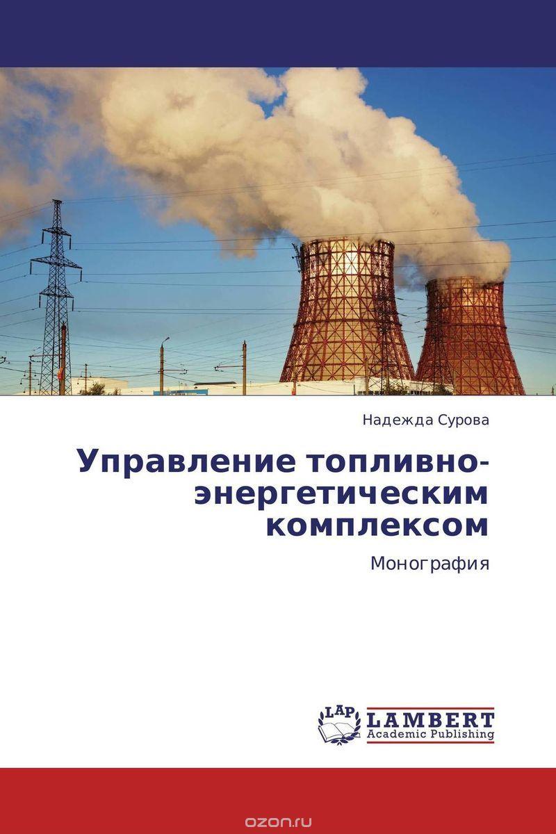 Управление топливно-энергетическим комплексом