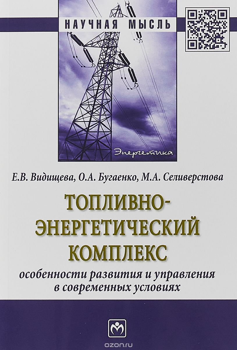 Топливно-энергетический комплекс.  Особенности развития и управления в современных условиях